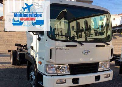 multiservicios-aduaneros-camion-5